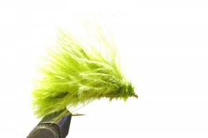leech in olive; small sizes worked best that day
