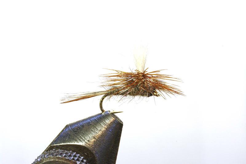 Parachute Adams Dry Fly $1 00 each NO limit No minimum