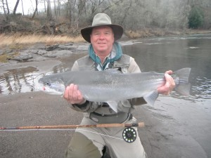 14 lb Steelhead caught and released with the 10 1/2' bamboo 3 pc fly rod
